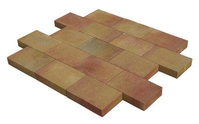 vlaksteen 20x30x6cm terrageel