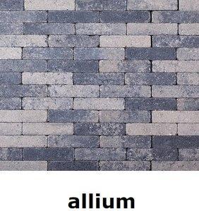 20x5x7cm kobblestone tuinvisie grijs-zwart allium