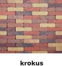 20x5x7cm kobblestone tuinvisie bont krokus