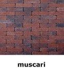 20x5x7cm kobblestone tuinvisie oud-hollands muscari