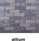 20x6,5x6,5cm kobblestone tuinvisie grijs-zwart allium